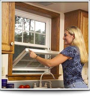 Energy efficient window replacements